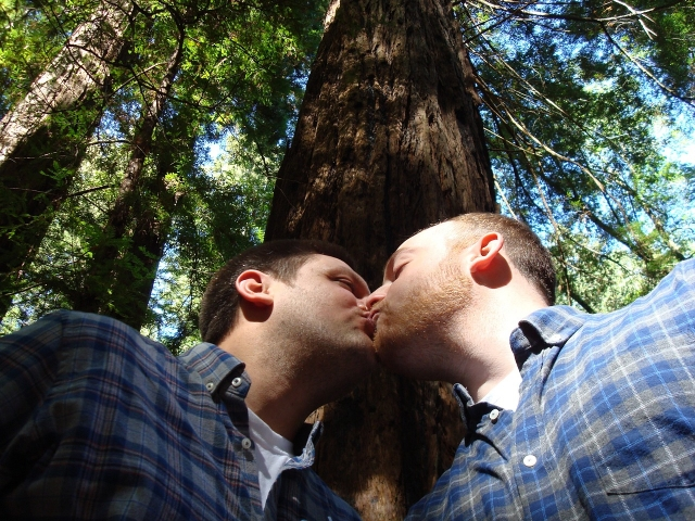 gay-marriage-1571621_1280
